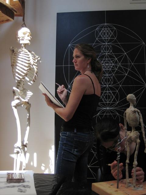 COSM anatomy201108174022011-08-0210-36-0743 of 262